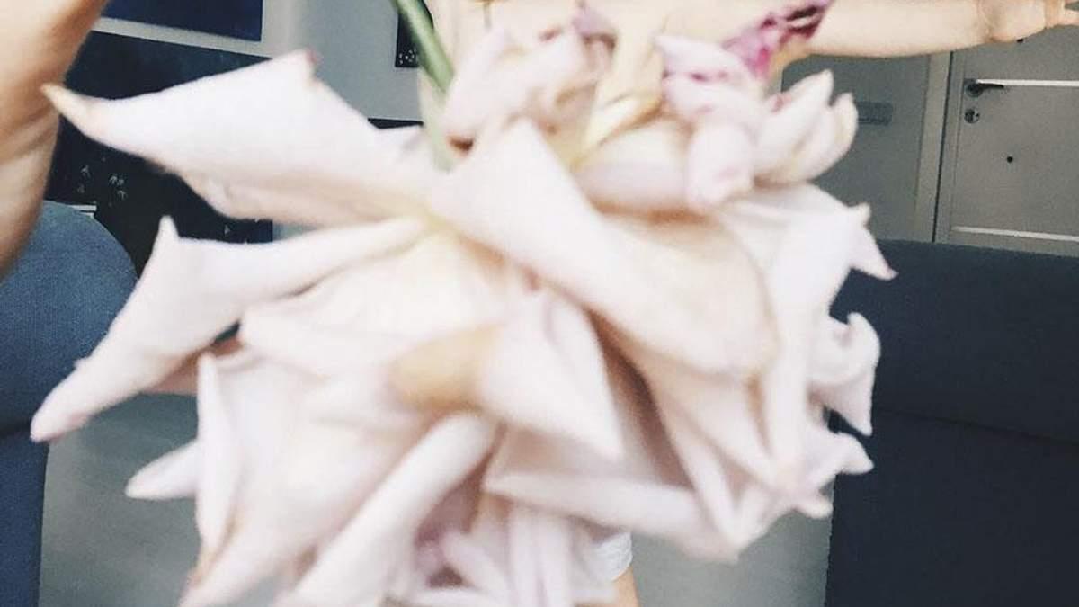 Мама и дочь делают невероятные фотографии с съедобными платьями: фото