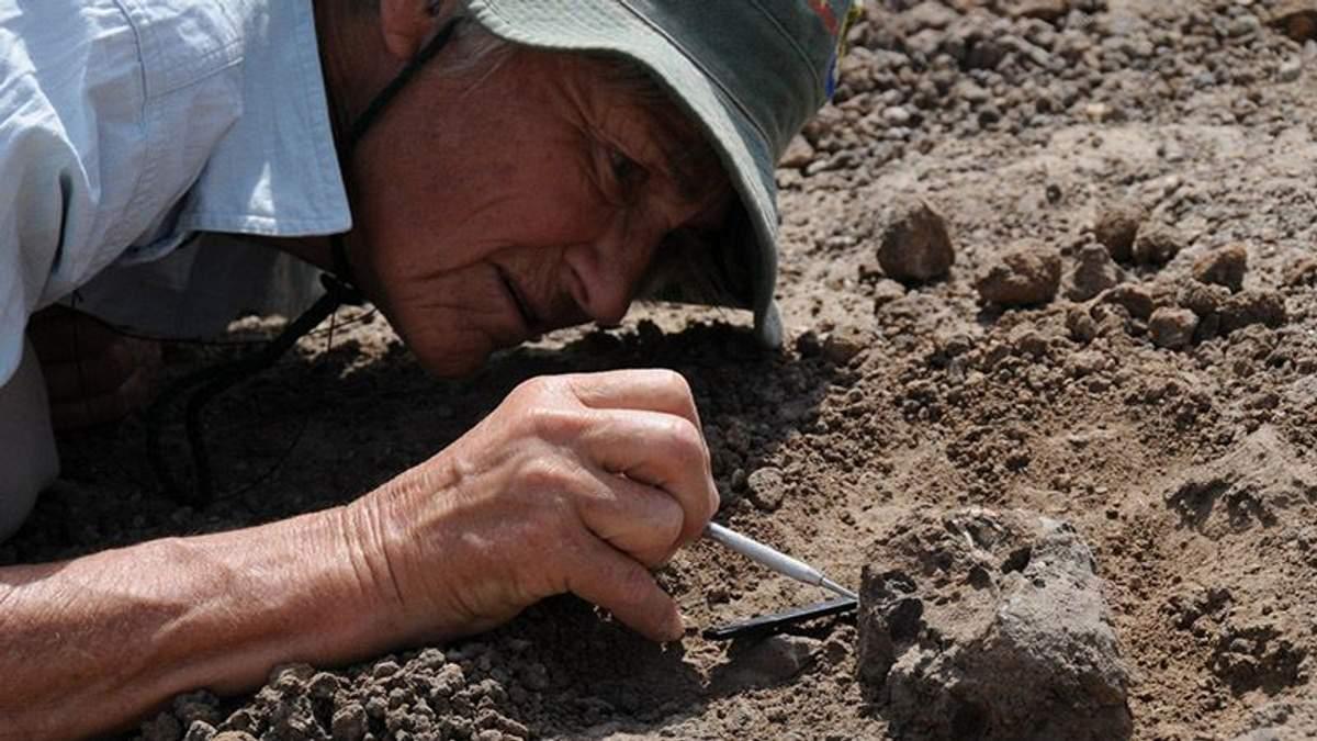 Палеонтологи нашли окаменелости животного, которому 250 миллионов лет