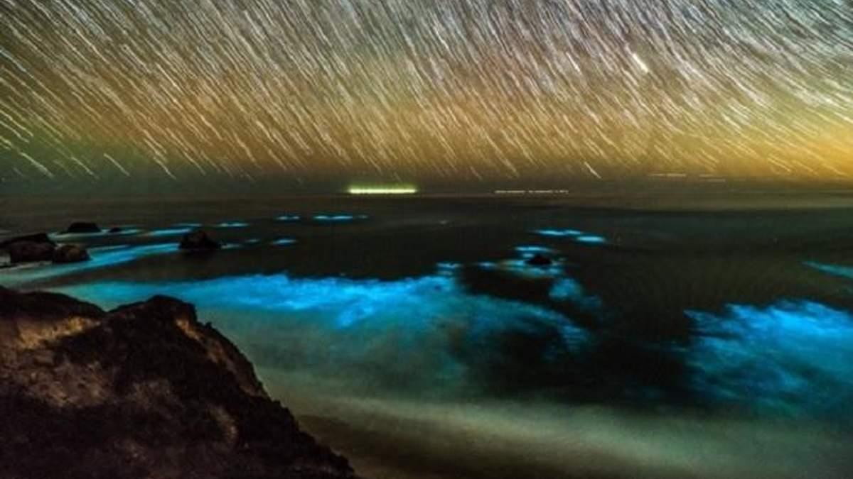 Біля узбережжя Каліфорнії засяяв океан: неймовірні фото