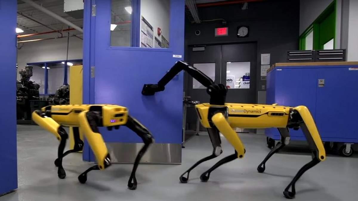 У роботів-собак з'явилася рука-маніпулятор: відео