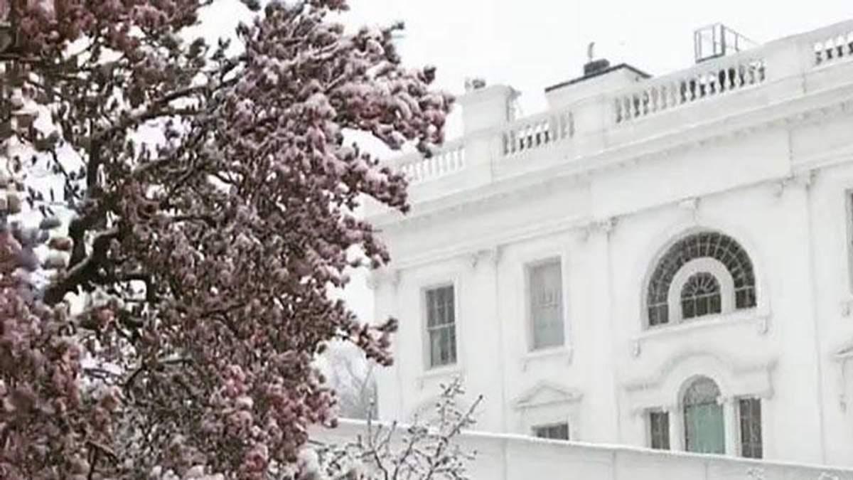 Сніг та квіти: Іванка Трамп показала, як виглядає подвір'я Білого дому