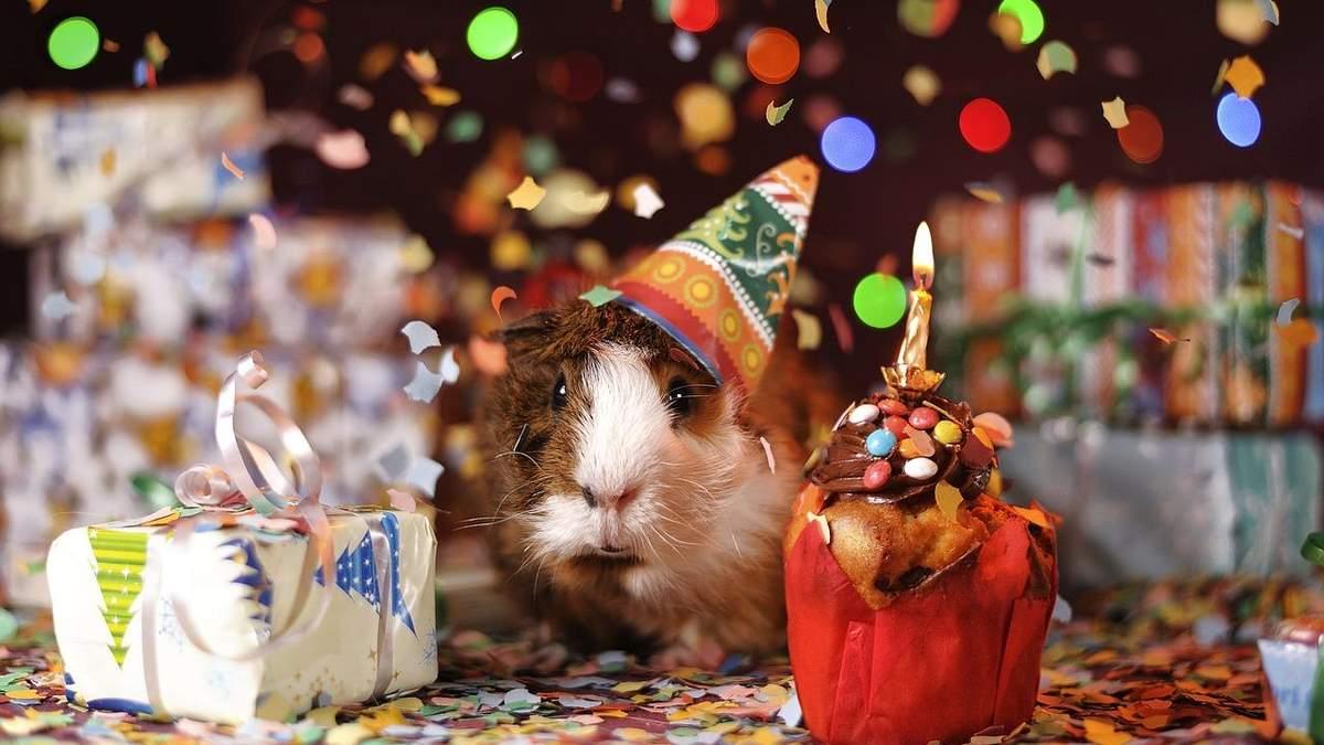 З днем народження - привітання з днем народження - проза і вірші