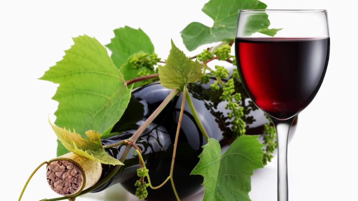Вино Бастардо - що відомо про виробництво вина Бастардо