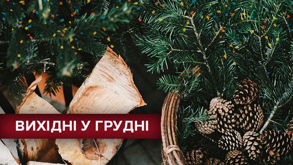 Вихідні у грудні 2018 Україна: календар вихідних днів