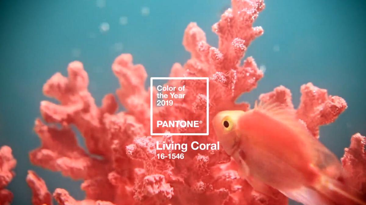 В Інституті Pantone обрали головний колір 2019 року