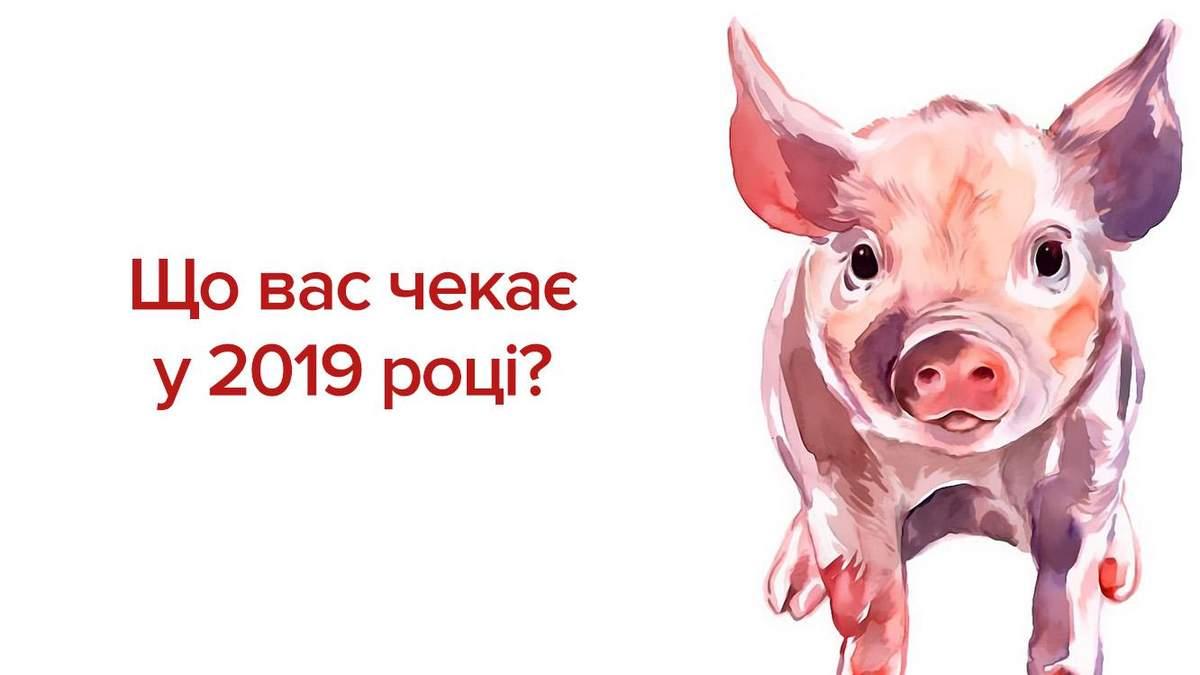 Східний гороскоп на 2019 рік - гороскоп на 2019 рік Жовтої Свині