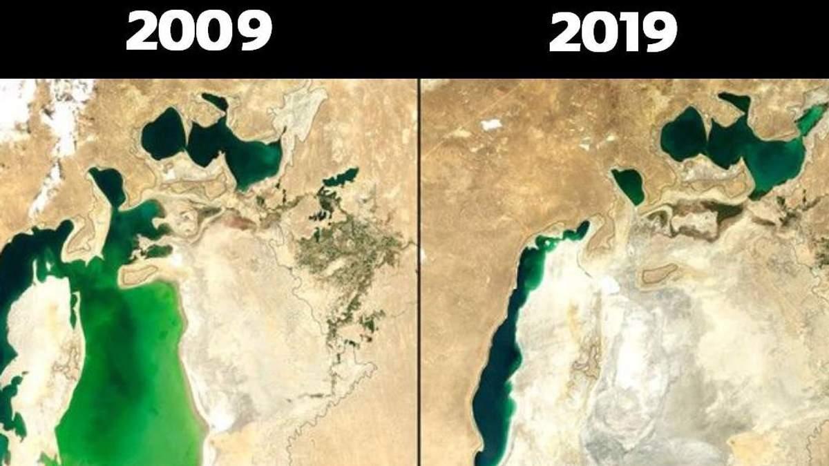 Экологи показали свой #10YearChallenge: как изменилась природа за последние 10 лет