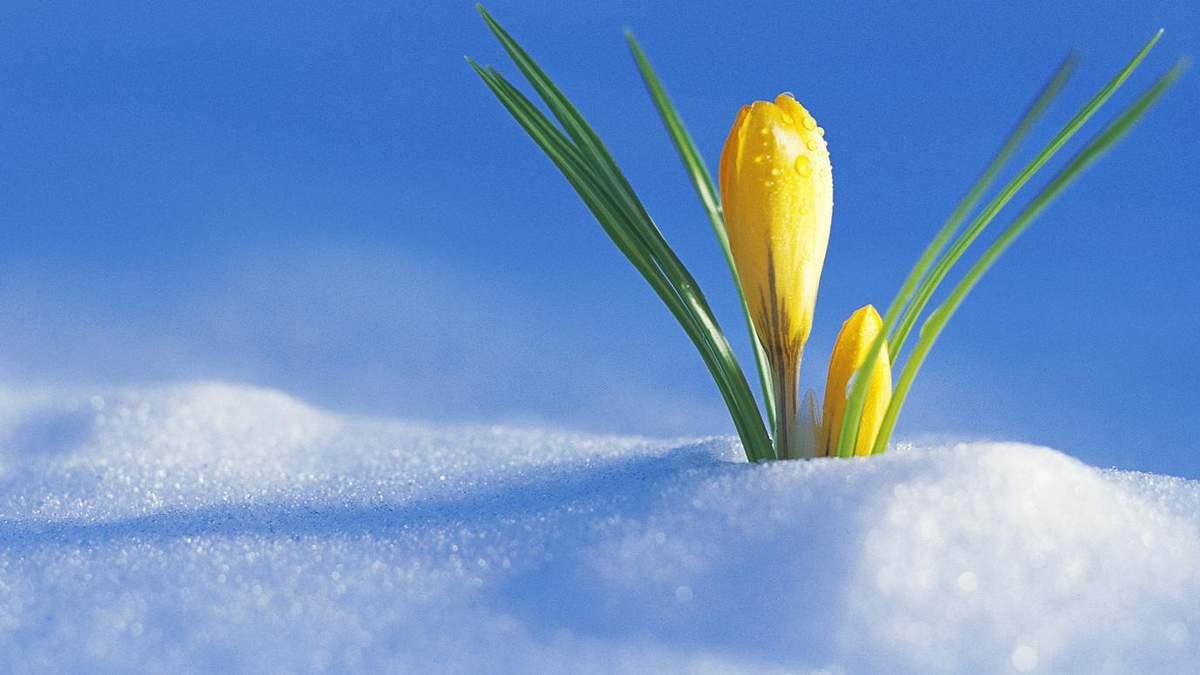 16 лютого – яке сьогодні свято та що не можна робити в цей день
