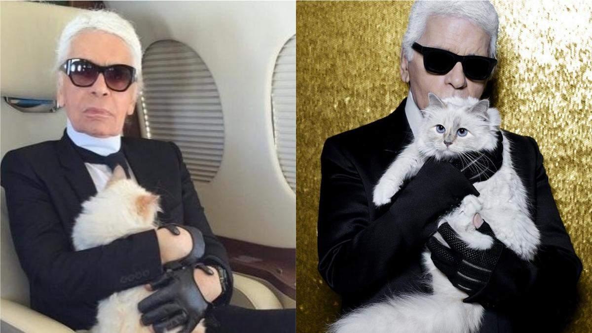 Що станеться з кішкою Карла Лагерфельда після його смерті: несподівані подробиці