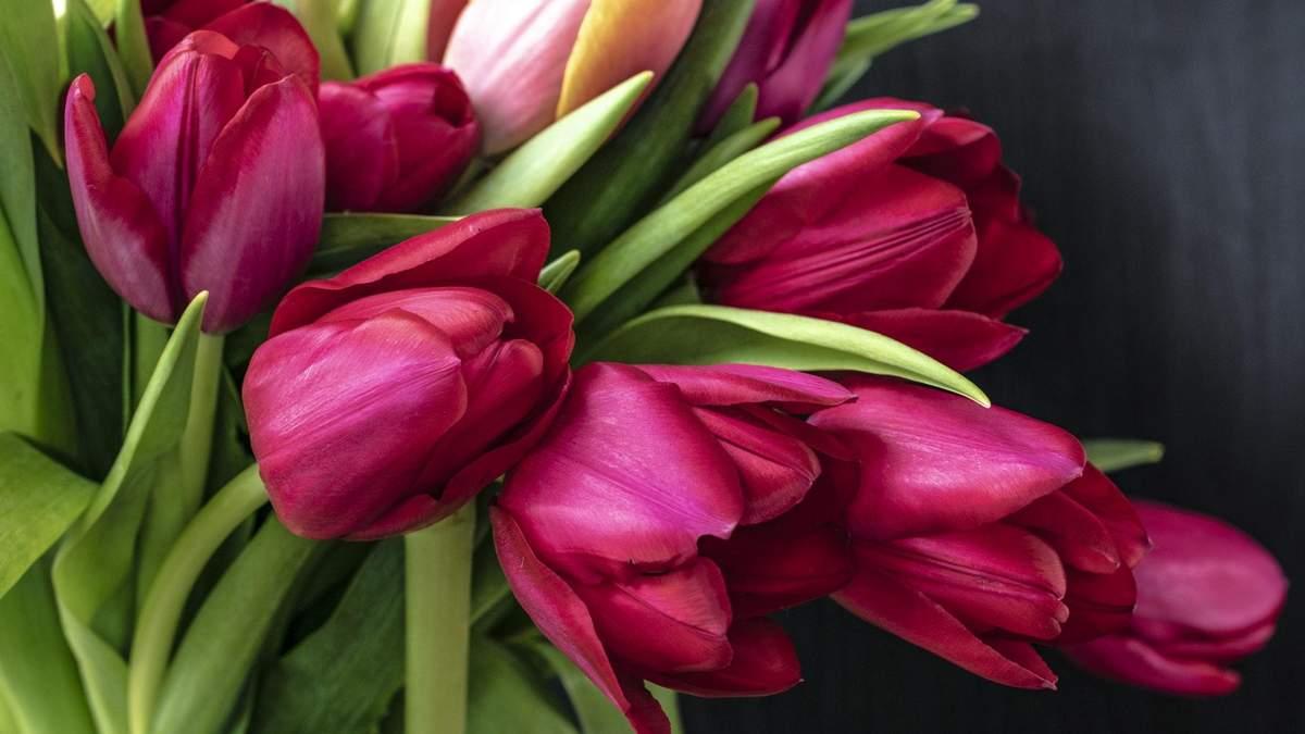 Поздравления с 8 марта 2019 - поздравления с 8 марта в прозе и стихах