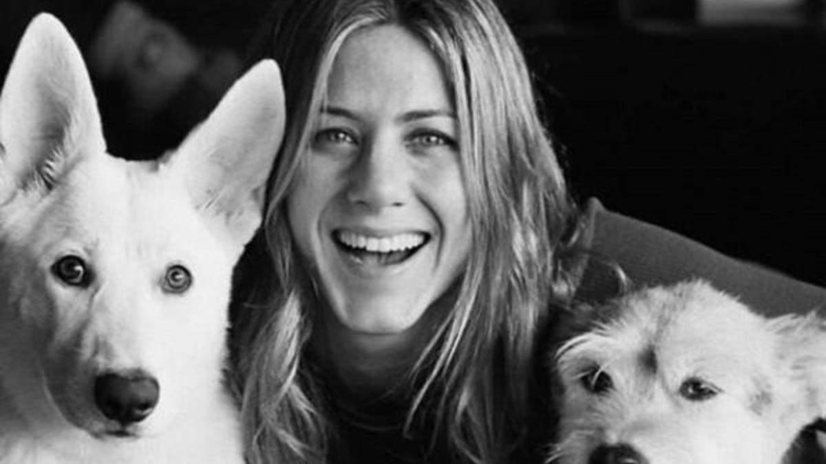 Дженнифер Энистон с собаками
