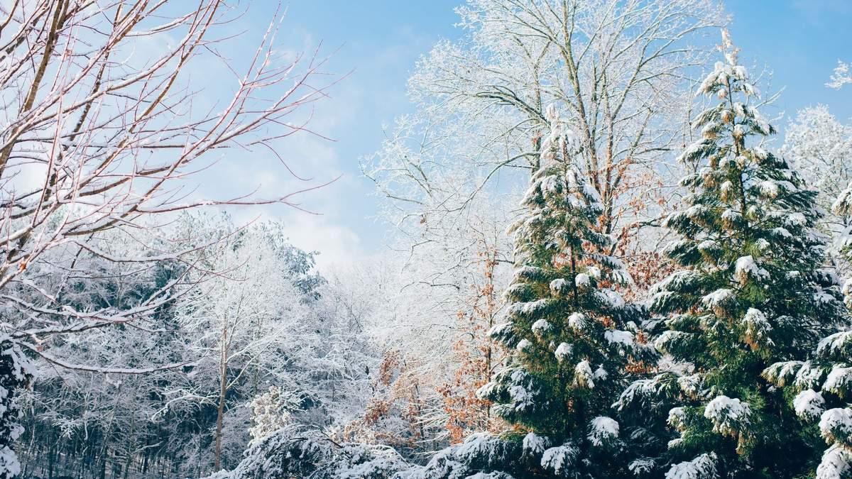 4 января – какой сегодня праздник и что нельзя делать в этот день