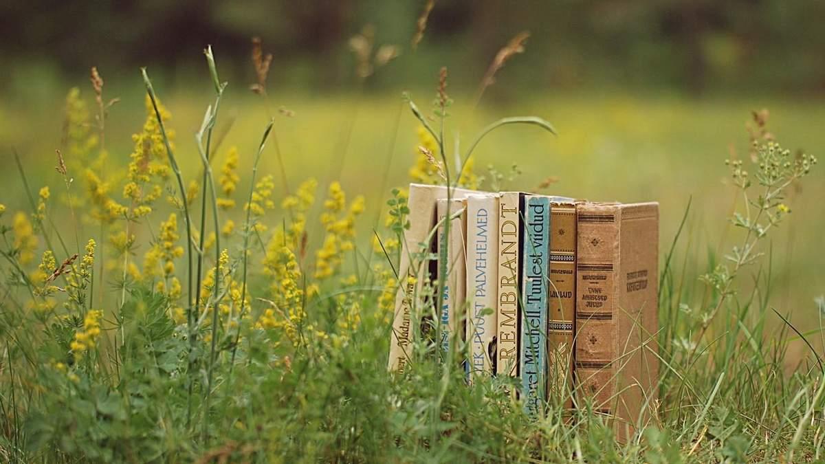 Підбірка літніх книжок