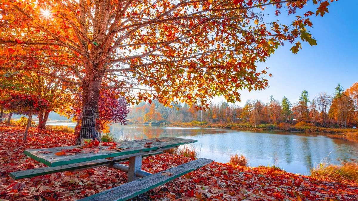 1 октября 2020 – какой праздник и что нельзя делать