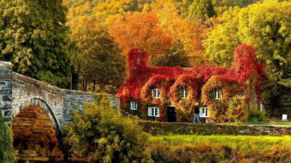 Осень в разных уголках мира: виртуальное путешествие