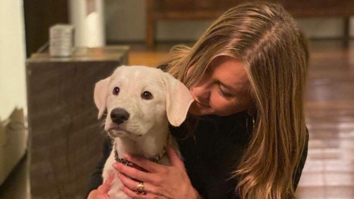Дженніфер Еністон замилувала мережу світлинами з собакою