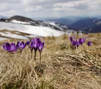 3 березня – яке сьогодні свято і що не можна робити