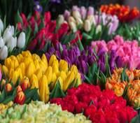 8 березня – яке сьогодні свято і що не можна робити
