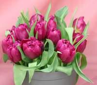 З 8 березня: найтепліші привітання для жінок-колег у віршах, прозі та картинках