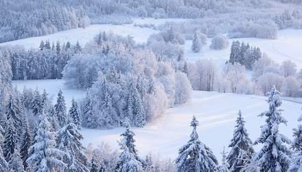 31 грудня – яке нині свято та що не можна робити