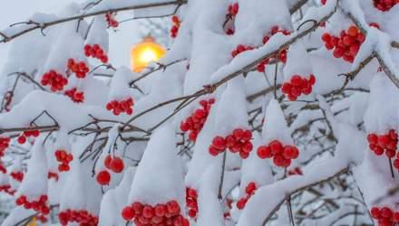 11 января – какой сегодня праздник и что нельзя делать в этот день