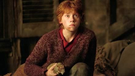 """Руперт Гринт признался, вернулся ли бы к своей роли в фильмах """"Гарри Поттер"""""""