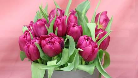 С 8 марта: самые теплые поздравления для женщин-коллег в стихах, прозе и картинках