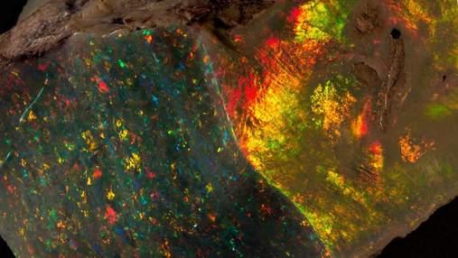 Австралийский музей представил очень редкий камень