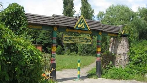 На Волыни иностранные волонтеры облагораживают музей деревенской архитектуры