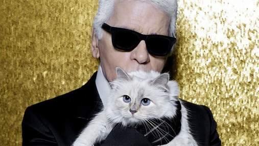 Кошка Карла Лагерфельда выпустит коллекцию одежды и аксессуаров в память о дизайнере
