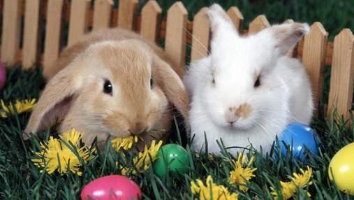 26 квітня – яке сьогодні свято та що не можна робити в цей день