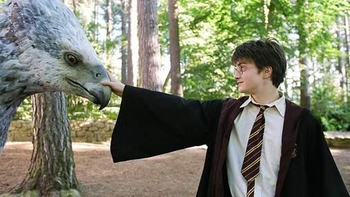 """Телеканал BBC зніме фільм про магічних істот за мотивами книг """"Гаррі Поттер"""""""