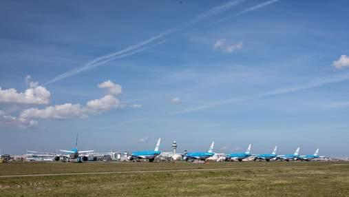 KLM планує поновити польоти до України: дати та напрямки