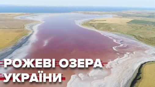 Розовые озера Украины: фото и видео