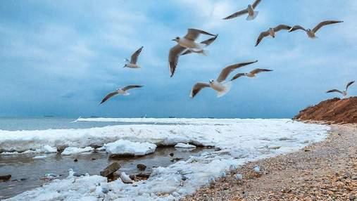 Всемирный день моря 2020: невероятные фото пляжей Украины в холодное время года