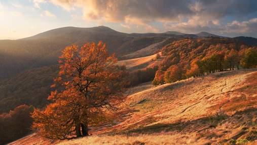 Хэллоуин по-карпатски: три горы, три легенды Славского