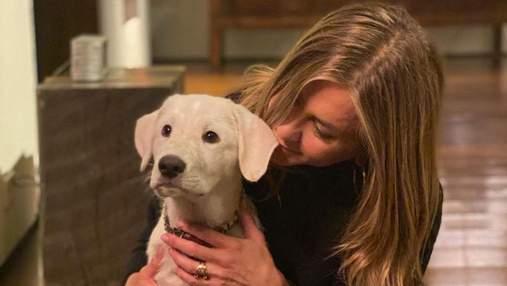 Дженнифер Энистон очаровала сеть фотографиями с собакой