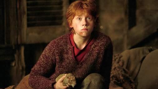 """Руперт Грінт зізнався, чи повернувся би до своєї ролі у фільмах """"Гаррі Поттер"""""""