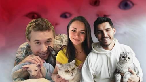 День кота: які українські зірки є палкими котолюбами