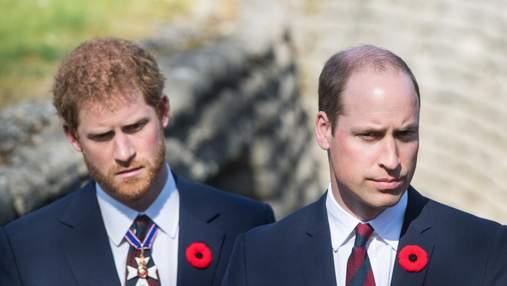 Принц Вільям обурений через те, що Гаррі розсекречує їхні розмови