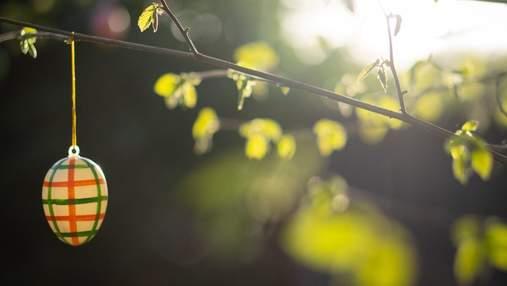 Як не знищити на Великдень планету: 6 простих речей для довкілля, які зробить навіть дитина