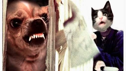 Вместо актеров: художник создал киноафиши популярных фильмов с котами и собаками