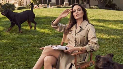 Анджелина Джоли прилетела во Францию: актрису застали в костюме пчеловода
