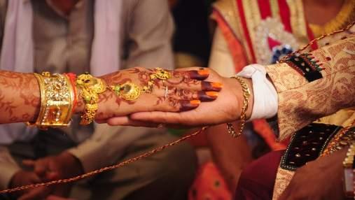 В Индии жених потребовал редкую черепаху и лабрадора в приданое: его семью арестовали