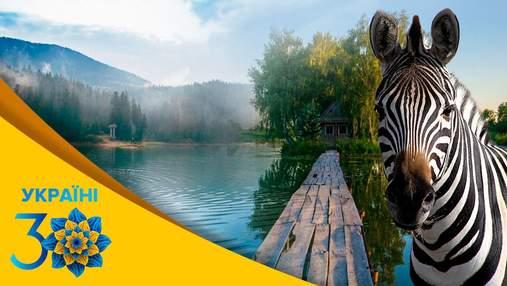 От Буковеля до Аскании-Новой: популярнейшие современные места для отдыха в Украине