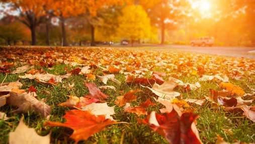 Українські пісні про осінь: атмосферна добірка